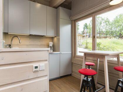 apartment 1050 West 1 Kościelisko Aneks kuchenny.