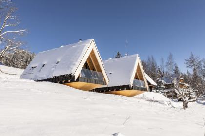 house North & South Cabin 2 Kościelisko