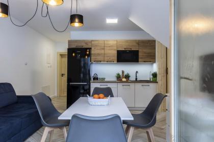 apartament Alpejski SPA 2 Kościelisko